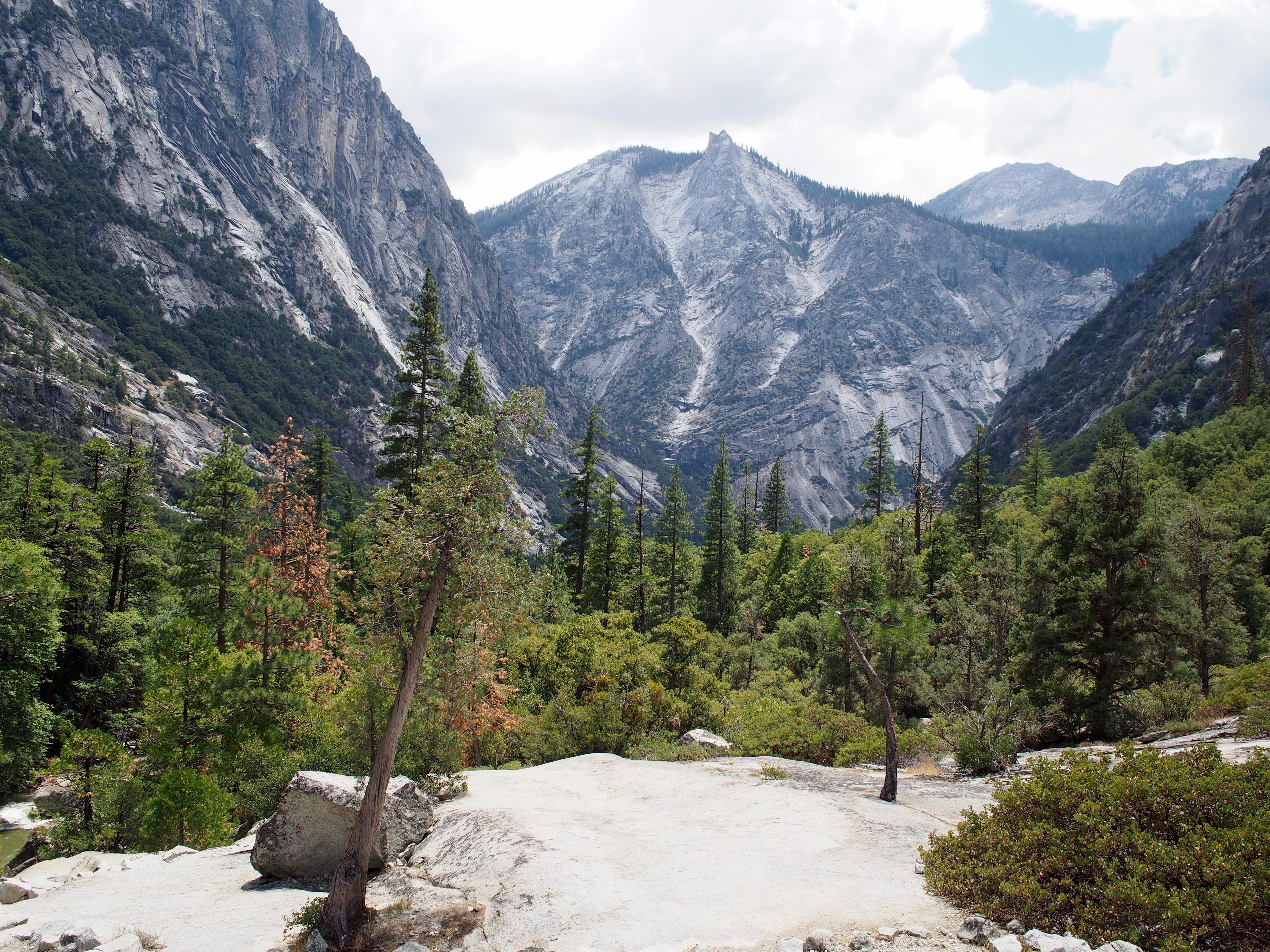 Kalifornia'da Kamp Macerası